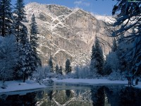Картинки Зима На Рабочий Стол Живые Обои