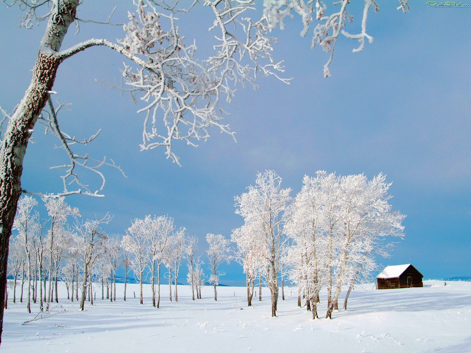 Обои На Рабочий Стол Зима На Даче