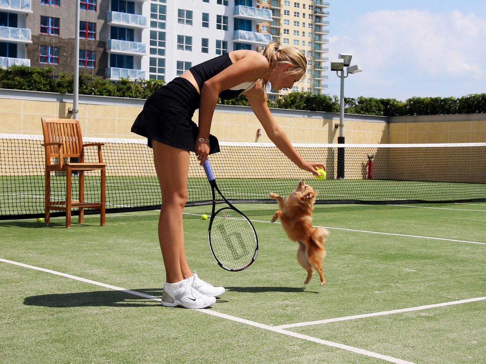ВестиRu US Open Мария Шарапова вышла в 18 финала