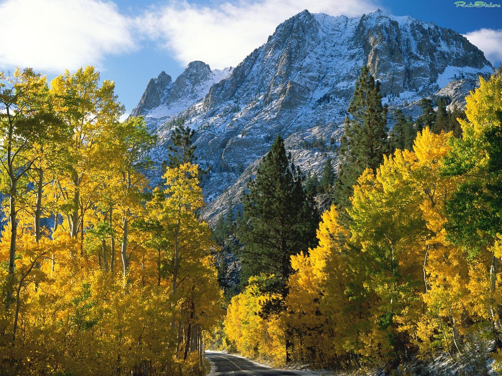 Обои природа осень